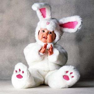 2011 год метталического кролика